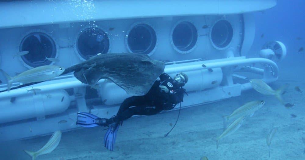 Vacaciones en familia en Tenerife, submarino