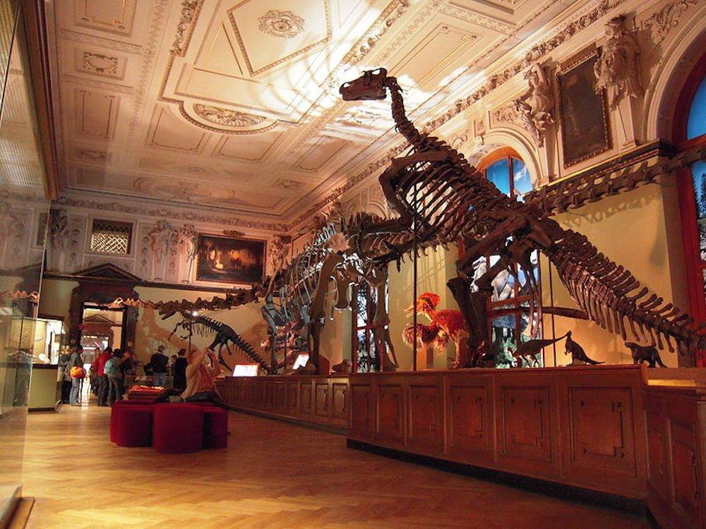 Viena con niños, museos
