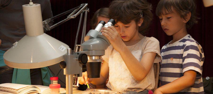 Barcelona con niños. Museo de Ciencias Naturales