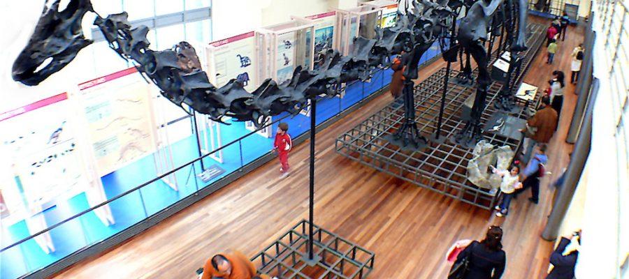 Museo de Ciencias Naturales ¡un gran plan en Madrid!