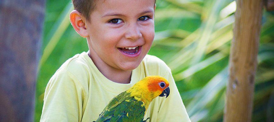 Planes con niños, Jardín del Papagayo en Benicarló