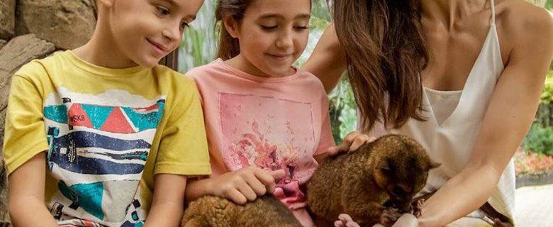 Mundomar, un parque de animales con experiencias únicas