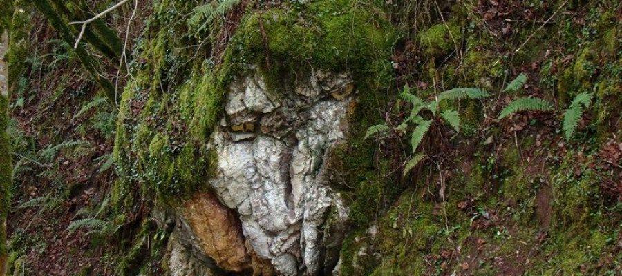 Asturias con niños, el bosque de Beyu Pen