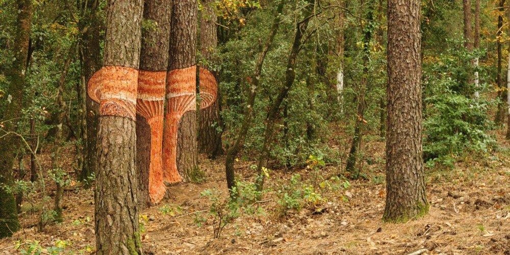Bosque pintado de Poblet