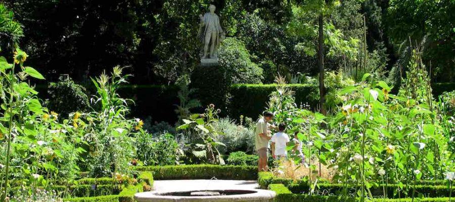 Real Jardín Botánico, un plan muy verde en Madrid