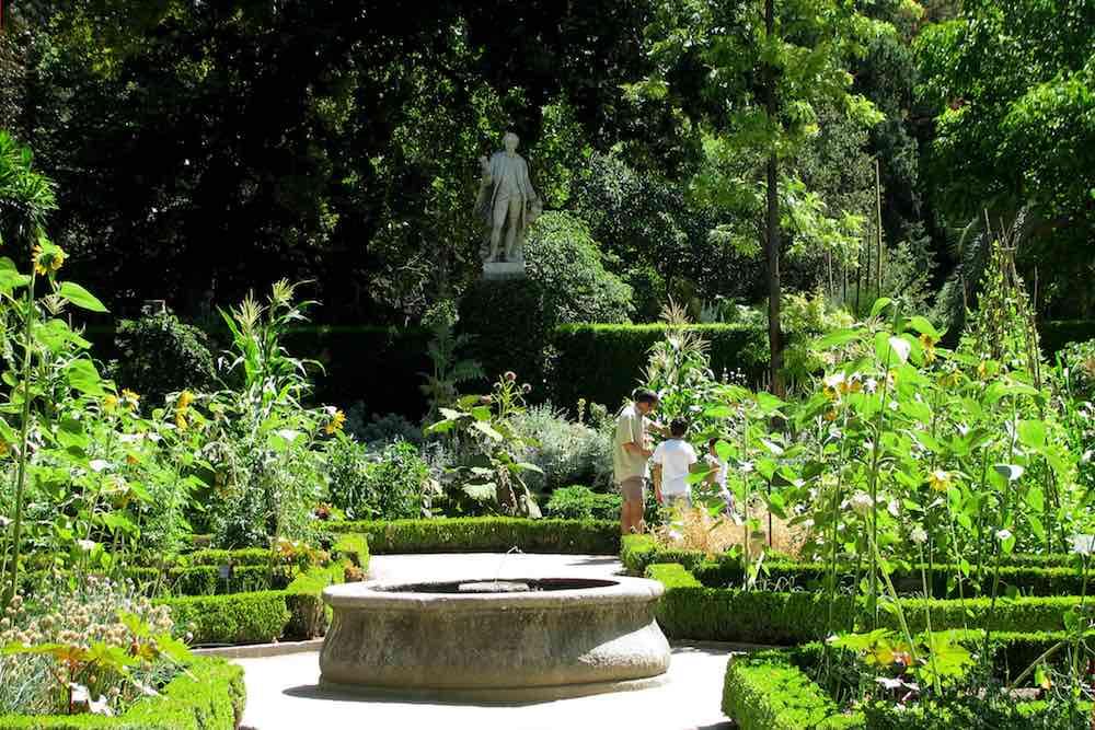 real jard n bot nico un plan muy verde en madrid ForJardin Botanico En Sevilla