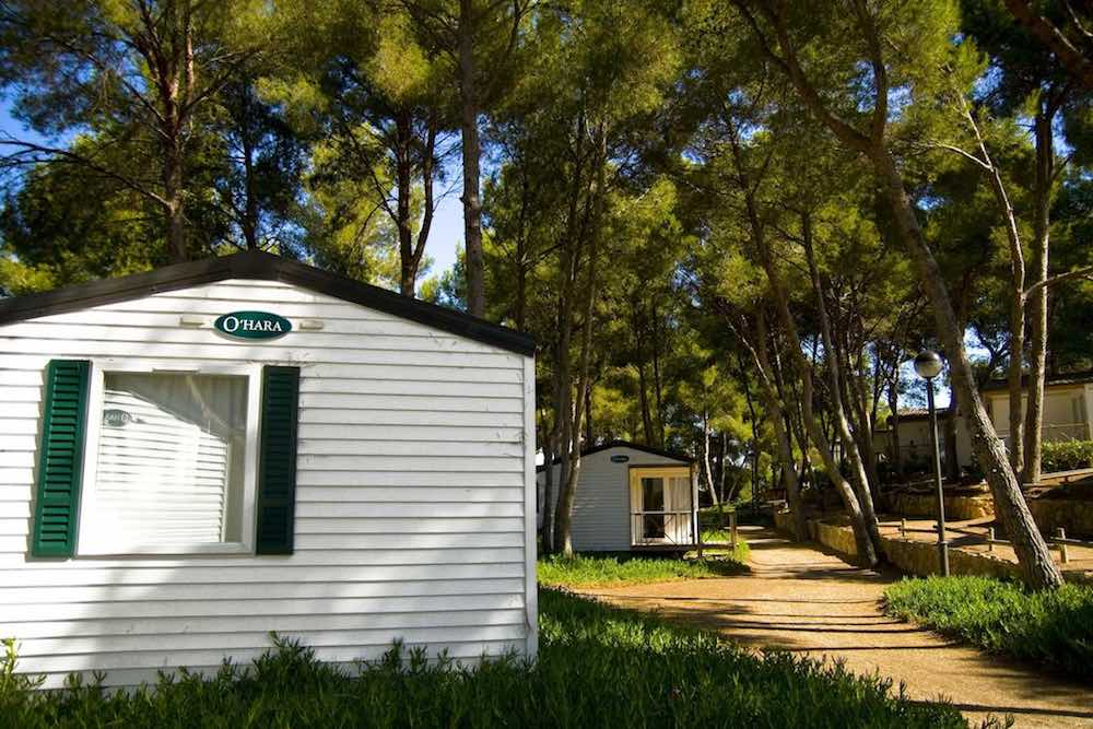 Las Palmeras Camping