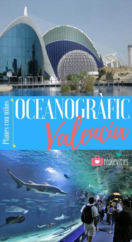 Qué ver en Oceanogràfic